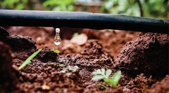 1° projeto de irrigação